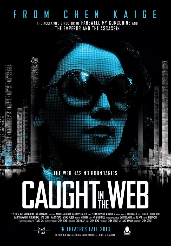 caught in the web poster