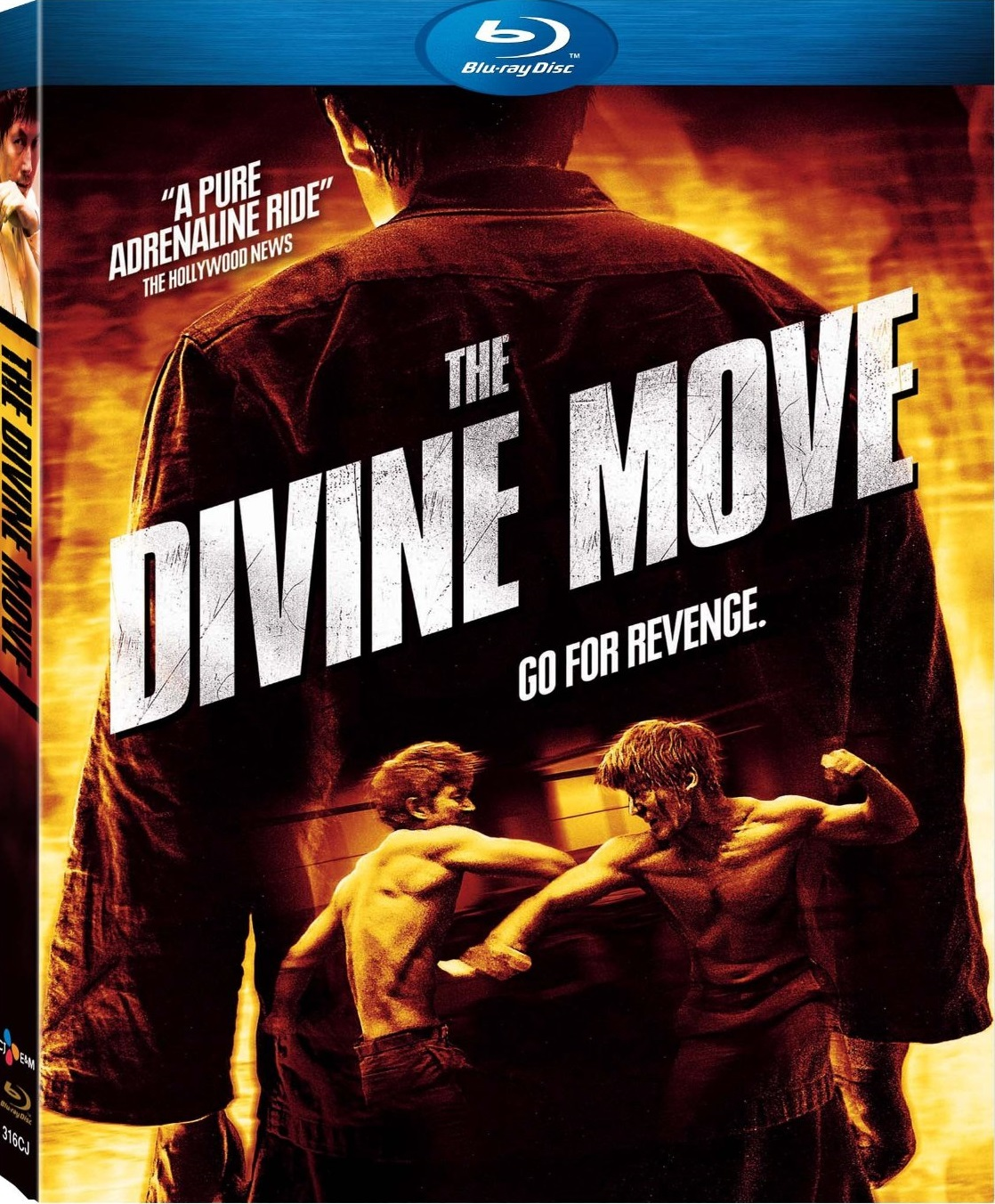 The_Divine_Move_Cover