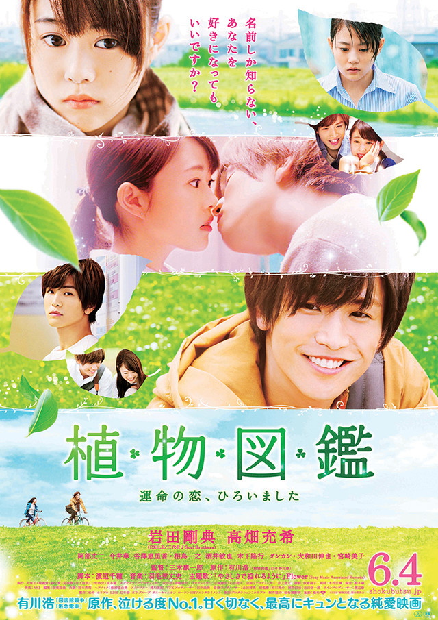 evergreen love poster
